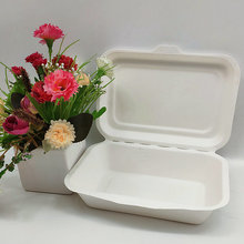 Disposable Sugarcane Boxes Takeaway Food Container 450ml