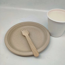Ecofriendly Compostable Party Plate Small Round Plates 6inch