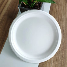 10 Inch Compostable Round Sugarcane Plate For Market