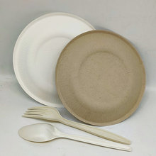 6 Inch Disposable Fancy Striped Paper Plate for Party Market