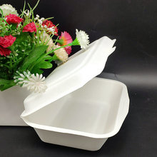 600ml Disposable Natural Lunch Bento Meal Box for Factory
