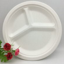 10 Inches Biodegradable Sugarcane 3 Compartment Lunch Plates