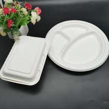 Biodegradable Sugarcane Bagasse Tableware