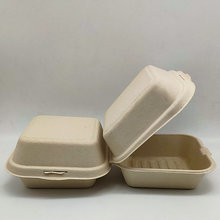 6 Inches Biodegradable Fancy Takeaway Burger Box Hot Dog