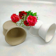 Mini Bagasse Cup Biodegradable Paper Pulp Cups 55ml 2oz