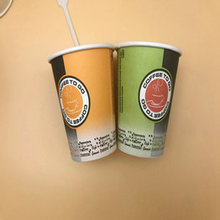 household paper cup compostable 8oz hot drinking cup