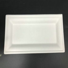 10*5''  square-shaped biodegradable sugarcane bagasse plate