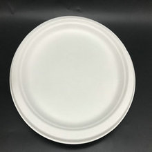 10'' biodegradable sugarcane pulp bagasse round plate