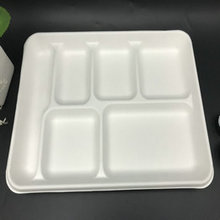 6 compartment disposable sugarcane pulp food tray