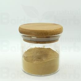 Chlorogenic acid 5%-99%; Honeysuckle flower extract;Chlorogenic acid powder