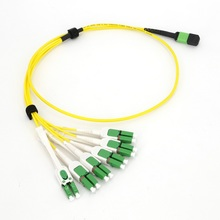 MPO MTP Harness Cables