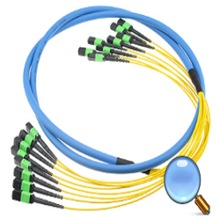 MPO MTP Trunk Cables