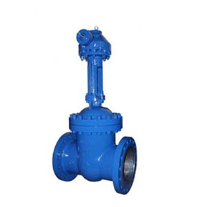 Standard industrial cast stainless steel seal gate valve