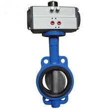 Cast Iron Lug Butterfly Valve With Electronic Acuator