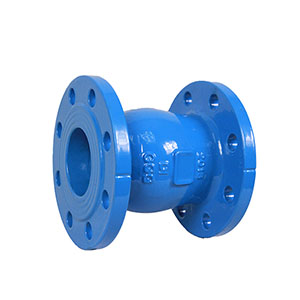 Manufacturers supplier piston tilting disc check valve nozzle check valve