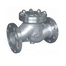 Cast Steel Hydraulic Piston Check Valve China