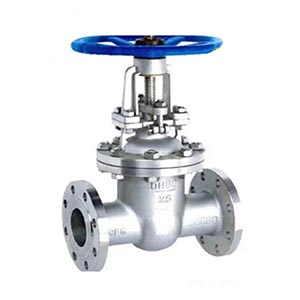 China manufacturer flanged type Stainless Steel resilient seated flanged gate valve