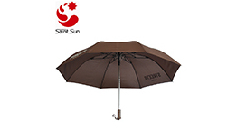 Our hot umbrella 2 folding automatic umbrella