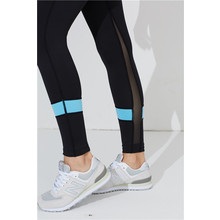 Wholesale Ladies Sexy   Yoga Legging  Wear Fitness