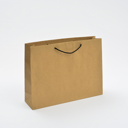 Plain Brown paper bags