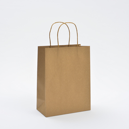 Brown Kraft paper bag with twisted handles