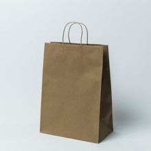 Brown kraft twisted handle paper bags