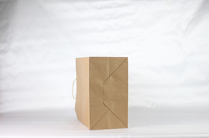 Plain Brown Kraft Paper Bags with twisted handle