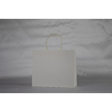 Plain White Paper Carrier Bag