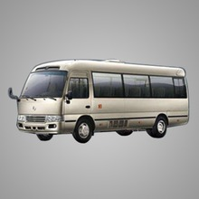 Toyota Coaster Airport Transfer Service in Japan