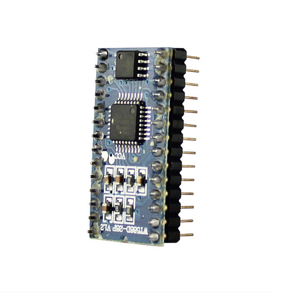 mini Recorder voice chip