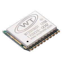WT2003B01 Voice Storage Module