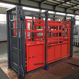powder coated weighing cattle crush for cattle yard system