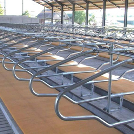 high process diary cow free stall for cattle farm equipment