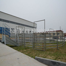 Galvanized Cattle Handling Equipment For Sale