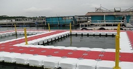 Use plastic to splicing the floating dock, not afraid of big waves, but also open a restaurant on it.