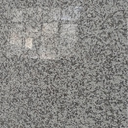 Chinese Cheap Granite Slabs G439 Granite Stone
