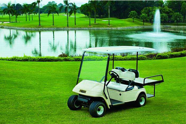 LiFePO4 Battery Can be used in Golf Car
