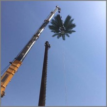 30m Palm Tree Tower