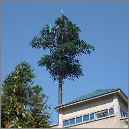Telecommunication Pine Tree Steel Monopole Tower