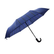 Gift Folding Umbrella auto open Close folding umbrella
