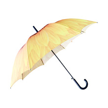 wholesale cheap  auto open  straight umbrella