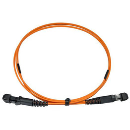 MTRJ Fiber Optical Patch Cord