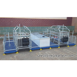 Double farrowing crate for pig farm