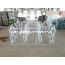 High Quality Gestation Crate for pigs