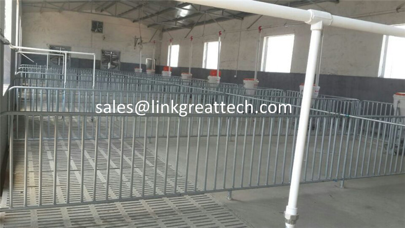 Product Large Pig Fattening Crate Pig Equipment Swine