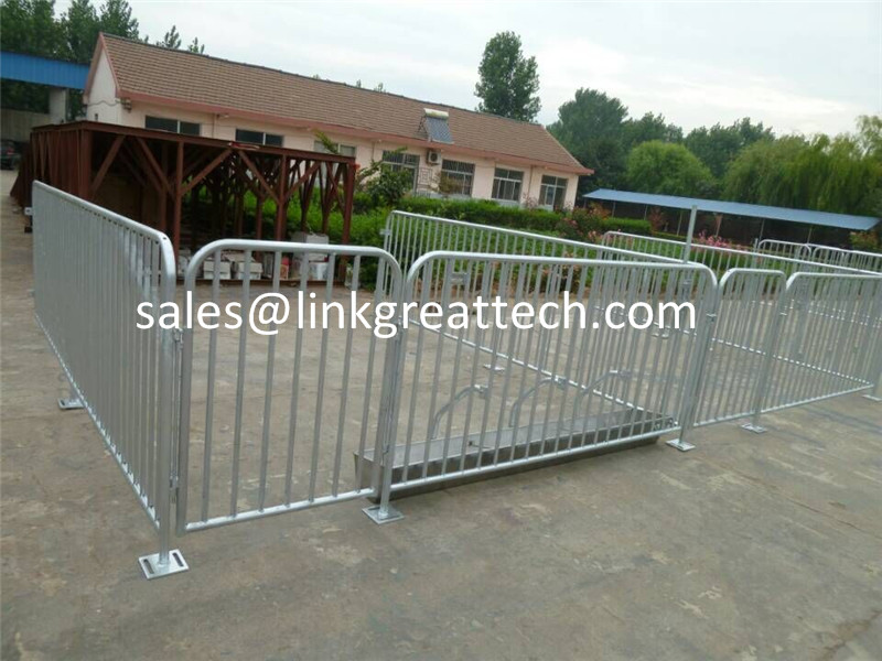 Product Pig Farm Fattening Large Stall Pig Equipment Pig