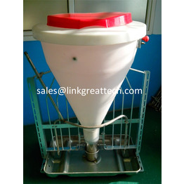 Dry and Wet Feeder for