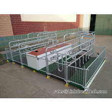 farrowing stalls      crates for animals