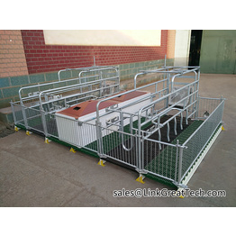 farrowing stalls      pig ferring crate