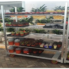 Horticultural Flower Trolley